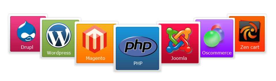 php-magento-wordpress-digitalelf